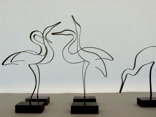 A ZAFRANA Vögel 5-9