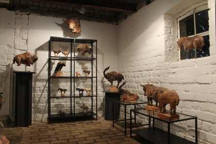 Showroom Ule Ewelt; Fotocopyright: Ewelt